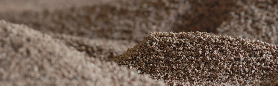 Produrre Energia dalla Biomassa
